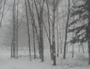 Никита Паськов. Это фото сделано прямо с крыльца нашей родной школы!