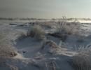 Никитина Елена. Чудесная зима … На снежные равнины пал туман…