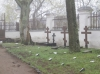 Монастырское кладбище.JPG