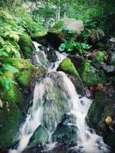Фото участницы Анасьевой Илоны Александровны из с. Перетычиха под названием Таёжный водопад
